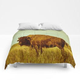 Vintage Bison - Buffalo on the Oklahoma Prairie Comforters