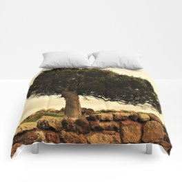 The tree and tue wall Comforters