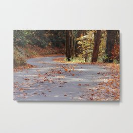 Fine Art Photography A Road Less Traveled Fall Day Smoky Mountain Park Tennessee Metal Print