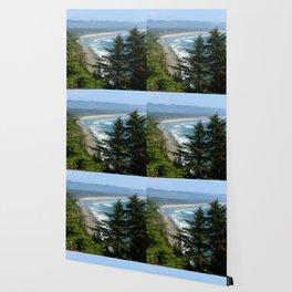 An Endless Costal View Wallpaper