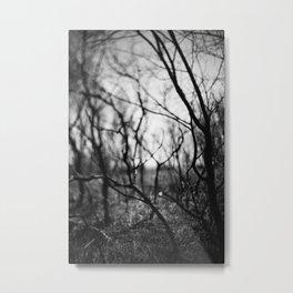 amongst the shadows. Metal Print