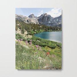 Sierra Alpine Wildflowers Metal Print