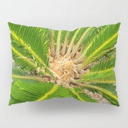 Palm leaves in Jeju island, Korea. Pillow Sham