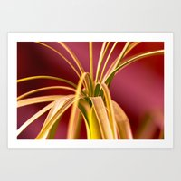 palm Art Prints featuring Palm by LoRo  Art & Pictures