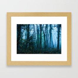 Sacred Woods Framed Art Print