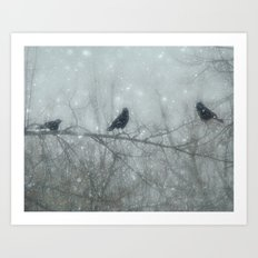 Wintry Crows Art Print