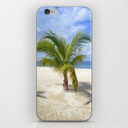 Palm - Cozumel iPhone Skin