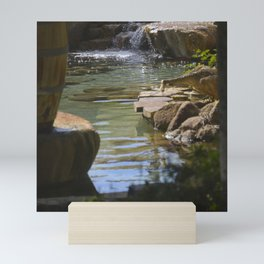 Secret Pond On Secluded, Romantic South Pacific Island Mini Art Print