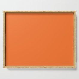 Solid Construction Cone Orange Color Serving Tray