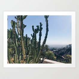 Cactus views Art Print