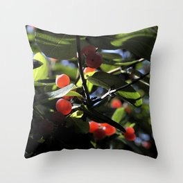 Jane's Garden - Sunkissed Red Berries Throw Pillow