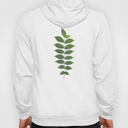 Green Leaf Botanical Print Hoody