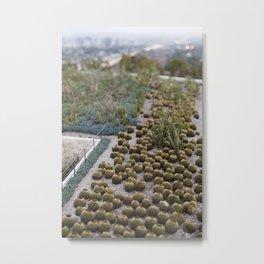 Cactus of Los Angeles Metal Print