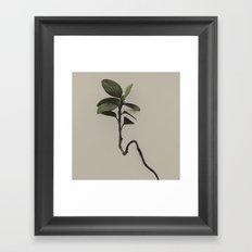 Nature Watch No. 7 Framed Art Print