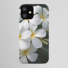 Wild Tropical Hawaiian Plumeria Flowers iPhone Case