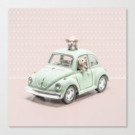 Road Pig on Pink Canvas Print