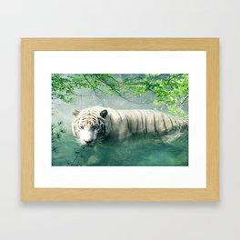 Lonely Tiger 2 Framed Art Print