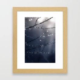 DARK BLUE FOREST Framed Art Print