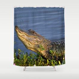 Alligator Grunt Shower Curtain