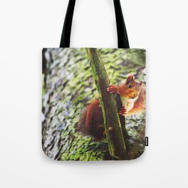 Red Squirrel 2 Tote Bag