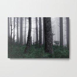 Forest Fog Fun Adventure Metal Print