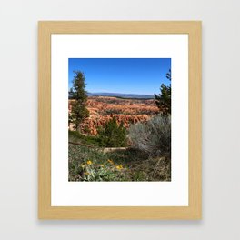Wild  Nature of Bryce Canyon Framed Art Print