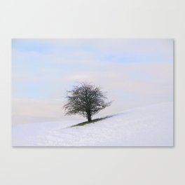 Simplicity in itself Canvas Print