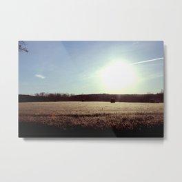 Staring Into the Sun Metal Print