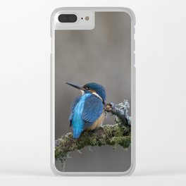 Common Kingfisher looking left Clear iPhone Case