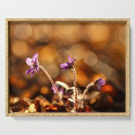 Wonderful Moment In Forest Springtime #decor #society6 Serving Tray