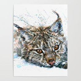 Lynx Wild and Free Poster