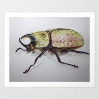 Beetle, Dynastes Tityus Art Print