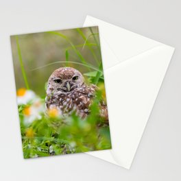 Owl in Flowers Stationery Cards