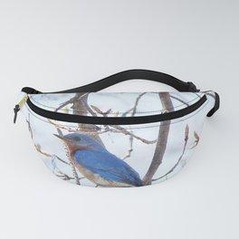 Bluebird Returns Fanny Pack