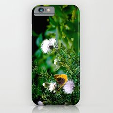 Old Style Butterfly  Slim Case iPhone 6s