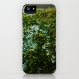 Moss Sporophytes and Foliose Lichen iPhone Case
