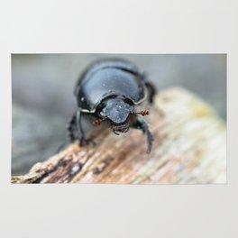 Close-up of a Dor / Dumbledore Dung Beetle Rug