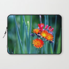 Fire Colors in the Greenery Laptop Sleeve