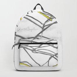 Forgotten Backpack