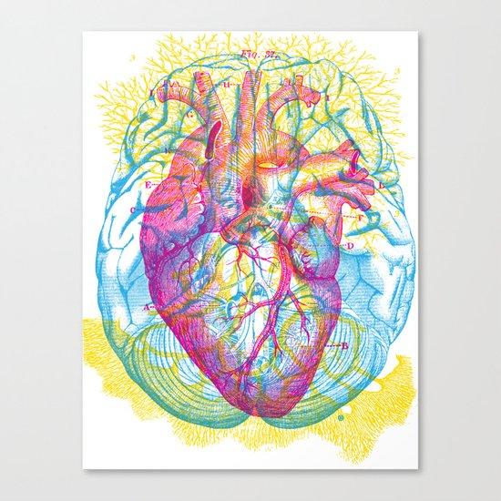 Brain Heart Circulation Canvas Print