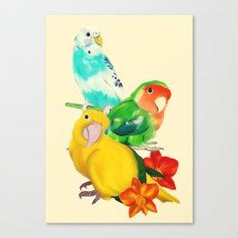 Beautiful Birds Canvas Print