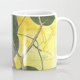Baltimore Oriole on Tulip Tree, Vintage Natural History and Botanical Coffee Mug