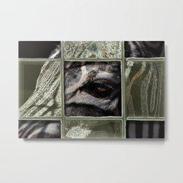 zee-brah' Metal Print