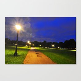 Stars of Primrose Canvas Print