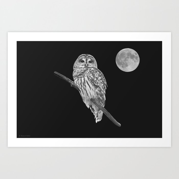 Owl, See the Moon (bw) Art Print