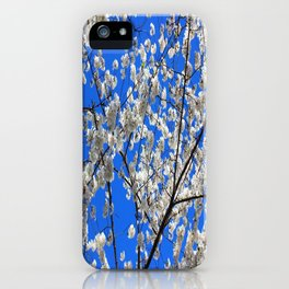 Cherry Blossoms in DC iPhone Case