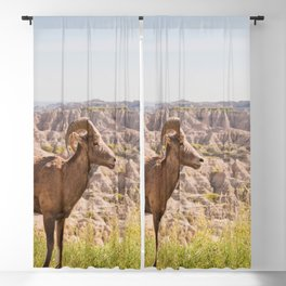 Stand Tall - Badlands Wildlife Photography Blackout Curtain