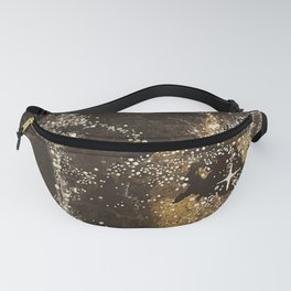 James' Web Fanny Pack