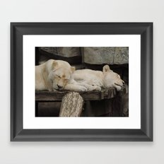 Sleeping beauties Framed Art Print