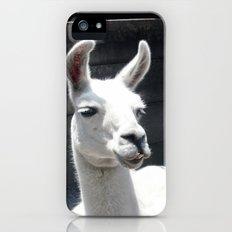 Llama Tell Ya... Slim Case iPhone (5, 5s)